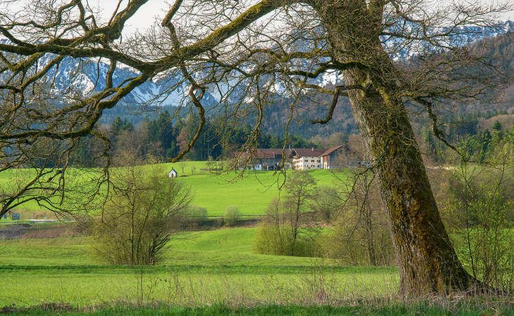 Teisendorf Bauernhof Almeding Hochstaufen Zwiesel