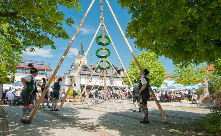 Maibaum-Aufstellen auf dem Teisendorfer Marktplatz