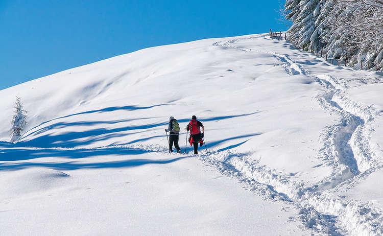 Winterwandern zur Stoißer Alm