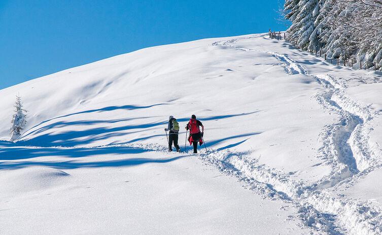 Winterwandern Teisendorf